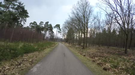 talaj : POV first person view motorcycle slowly moving over forest road moving through wide corners high performance motorbike bikecycle beautiful nature on both sides of curved asphalt road 4k quality
