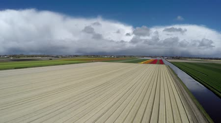еще : Aerial moving on farm landscape arriving at not yet grown tulipfield showing sand and different layers of sand on field for groing flowerfield Lisse great tourist attraction Netherlands 4k Стоковые видеозаписи