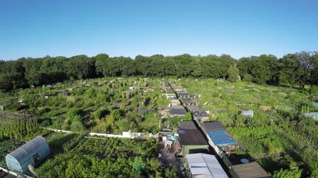 навес : Aerial or community gardens or allotments showing birdview or several at plots of land made available for individual non-commercial gardening or growing food plants shelters and huts for tools 4k Стоковые видеозаписи