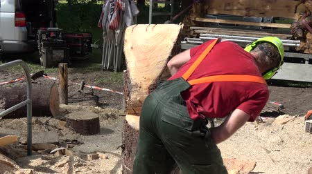 ear protection : Lumberjack also known as woodcutter or timber cutter using chainsaw to cut through large and wide tree trunk piece of wood creating a wooden statue man wearing helmet and ear hearing protection 4k