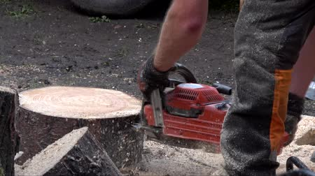 timberland : Lumberjack also known as woodcutter or timber cutter using chainsaw to cut through large and wide tree trunk piece of wood creating thin plates of wood activity taking place on lumberjack festival 4k