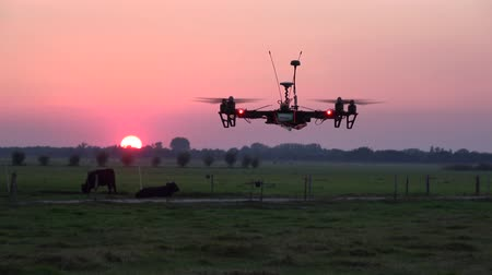 stable fly : Black drone with red led lights and four propellers hoovering above field in background showing sundown and some cows in field beautiful sky red and orange sun was almost gone high tech UAV quadcopter 4k