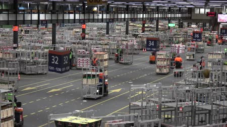 dağılım : Flower auction distribution center showing karts moving fits eachother on busy roads pulling racks full of plastic crates with colored flowers moving to trucks for Further distribution to shops 4k Stok Video
