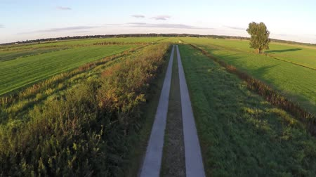 equinox : Aerial on beautiful summer evening with sunshine flying over cornered small rural road moving fast through corners fresh grass green colors on both sides of path and some blue sky background 4k Stock Footage