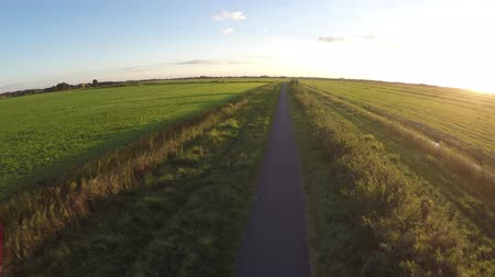 equinox : Aerial on beautiful summer evening sunshine with flying straight over small rural road moving fast forward fresh grass green colors on both sides of path and some bushes on rightside with foliage 4k