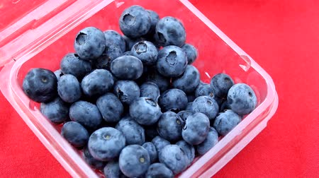 beslenme : lovely blueberry in basket Stok Video