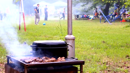 grillowanie : BBQ smoked grill playground picnic in the background