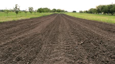 plowed land :  agricultural plowed field ground soil Stock Footage