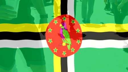 protestor : Dominica flag and People