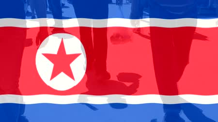 protestor : North Korea flag and People