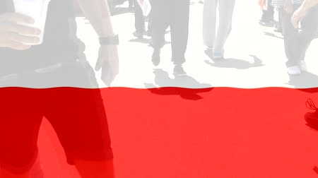 protestor : Poland flag and People Stock Footage