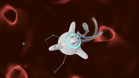 The nanorobot catches and destroys the virus. 3D render. Vídeos
