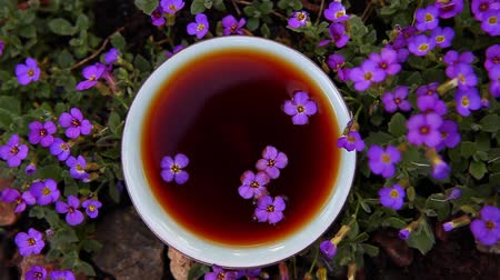 hot pot : Black Chinese Tea garden flowers