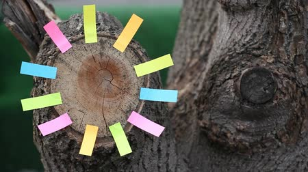 lumber : Forest tree stub paper stickers nobody hd footage Stock Footage