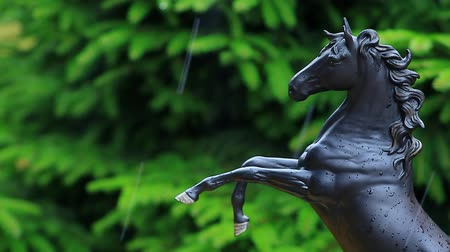 dark bay : black horse figure