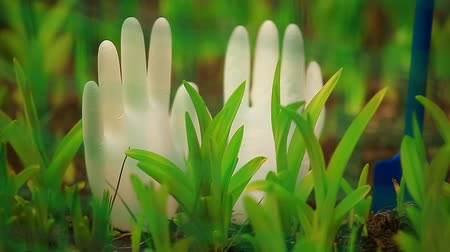 ленивый : White silicon gloves in  garden