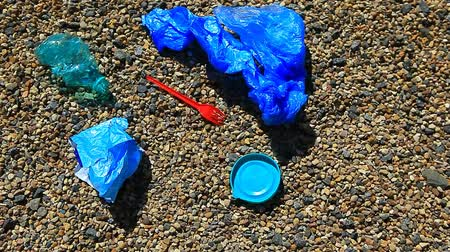 contaminação : plastic bottle on beach stone