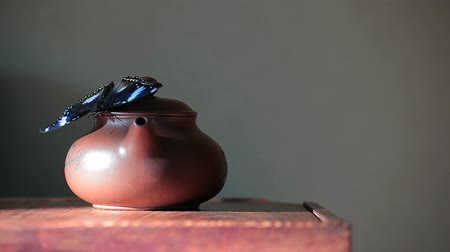 citron : Chinese teapot butterfly wooden desk green wall hd footage