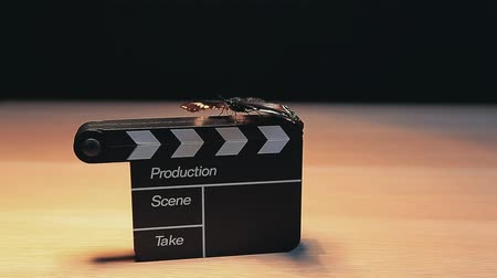 film slate : clapper board butterfly table dark background hd footage Stock Footage