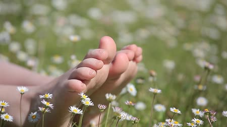 boso : children foot camomile field background hd footage