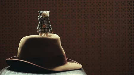 bevésett : vintage hat cat wooden background hd footage