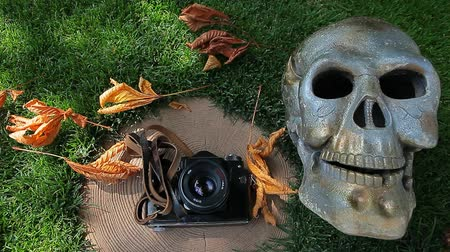 zátiší : old camera skull stub grass background hd footage nobody Dostupné videozáznamy