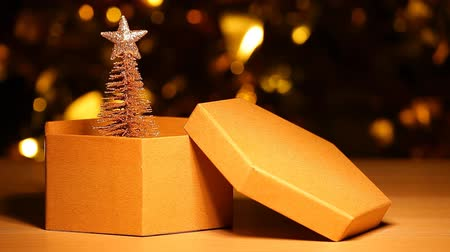 paper box fir tree table dark background hd footage