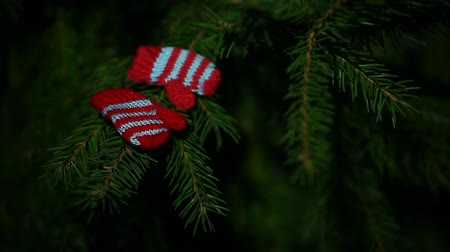 crochê : wool gloves fir tree background