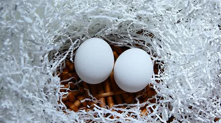 chicken egg cut paper basket background hd footage Stock mozgókép