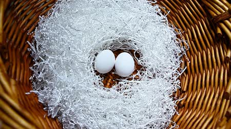 желток : chicken egg cut paper basket background hd footage Стоковые видеозаписи