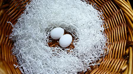 хрупкий : chicken egg cut paper basket background hd footage Стоковые видеозаписи