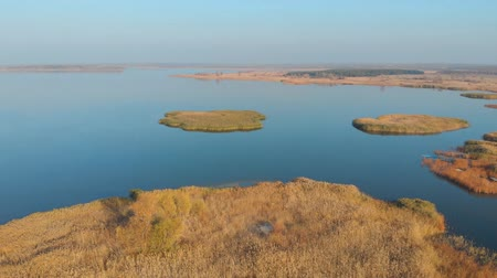 Aerial drone view of small reeds islands and coast bay with clear turquoise water. Scenic Oskol storage reservoir with transparent clear water landscape in Ukraine