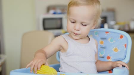 Cute adorable caucasian blond boy sitting in highchair at kitchen and enjoy eating tasty sweet boiled corn. Happy childhood and healthy children food concept