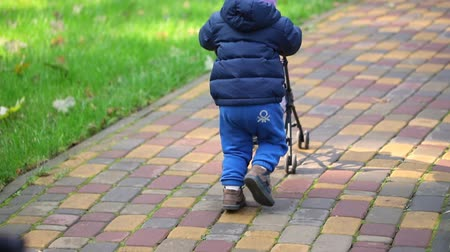 Cute adorable little toddler boy in blue casual clothes having fun running and pushing toy stroller at city park in autumn outdoors. Child enjoy playing role game as parent Vídeos