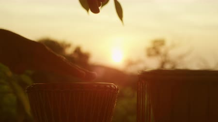vila : Playing Ethnic Drums Outdoors at Sunset Time. Shot on RED Digital Cinema Camera in 4K, so you can easily crop, rotate and zoom, without loosing quality. ProRes codec  - Great for editing, color correction and grading. Vídeos