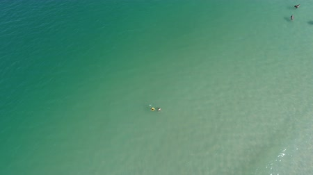 dron : Mother with baby are swimming in a pure blue sea. Drone footage. Thailand. Koh Phangan. Stock Footage