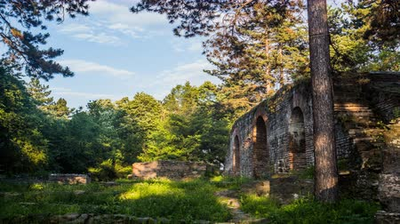 stín : Ruins in the Forest with Beautiful Light, Vibrant time-lapse of ruins within nature, Trees, clouds and a taste of sunlight
