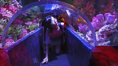 underwater video : Cute Asian Thai girl is crawling under little glass tunnel underwater of an aquarium with tropical coral reef and marine fishes surroundings in HD quality video