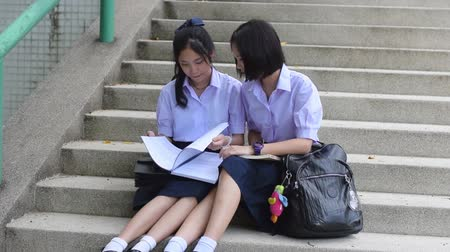 uniforme : Cute Asian Thai high schoolgirls student couple in school uniform sit on the stairway discussing and reading homework or exam together.