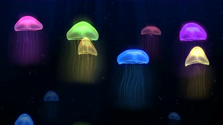 Seamless animation colorful jellyfish in deep sea underwater background pattern in fantasy marine concept. Graphical sea animal nature background or screen saver 4k. Dostupné videozáznamy