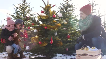 безделушка : amily decorating the christmas tree in forest Стоковые видеозаписи