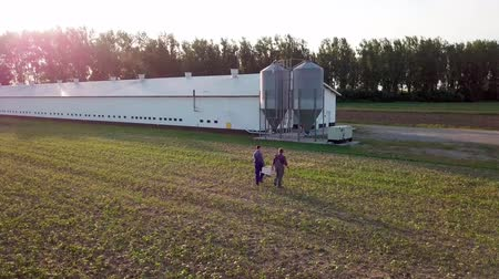 chicken coop : Aerial view of farmers walking across the field Stock Footage