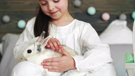 sieves : Close up of a cute girl stroking the rabbit Stock Footage