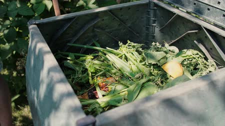 biodegradable : Bio container of organic wastes