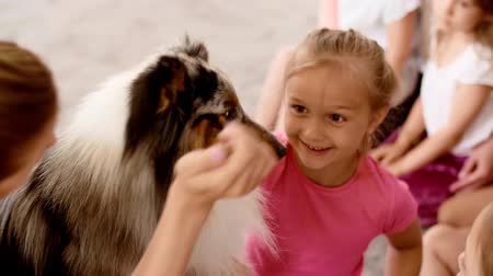 trained : Happy kids playing with therapy dog