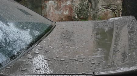 monszun : Close-up of the back of car while raining.