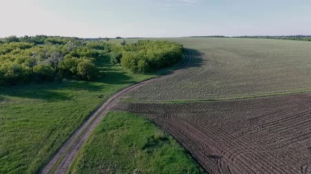 flight over an agricultural field, dirt road and forest. Spring season, May.