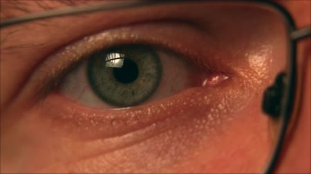 rectus : IT Professional Eye Closeup with Glasses Stock Footage