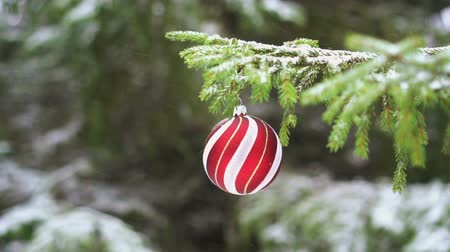 Kerstbal op de Fir Branch, slow-motion HD