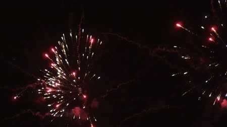 firework display : The fireworks in the night sky 4K